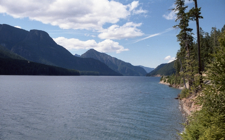 Looking north on Buttle Lake, Vancouver Island, BC